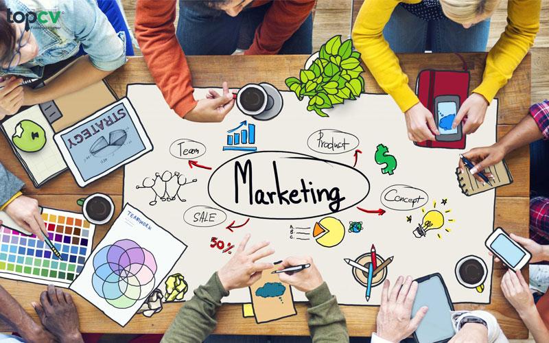 Nhân viên marketing online làm gì?